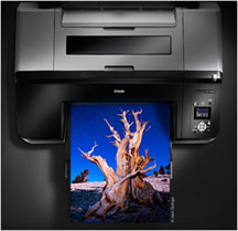 5 Tips for Troubleshooting Your Epson Printer | Imaging