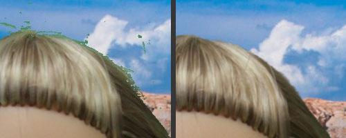 Green screen software comparison